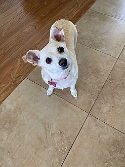 Kaylee Photo #1