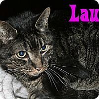 Adopt A Pet :: Lauren & Lauri - East Stroudsburg, PA